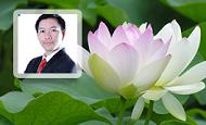 Bổ trợ và nâng cao Ngữ văn 7 (GV: thầy Nguyễn Phi Hùng)