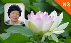 Luyện thi quốc gia PEN-M: môn Ngữ văn (Cô Trịnh Thu Tuyết)
