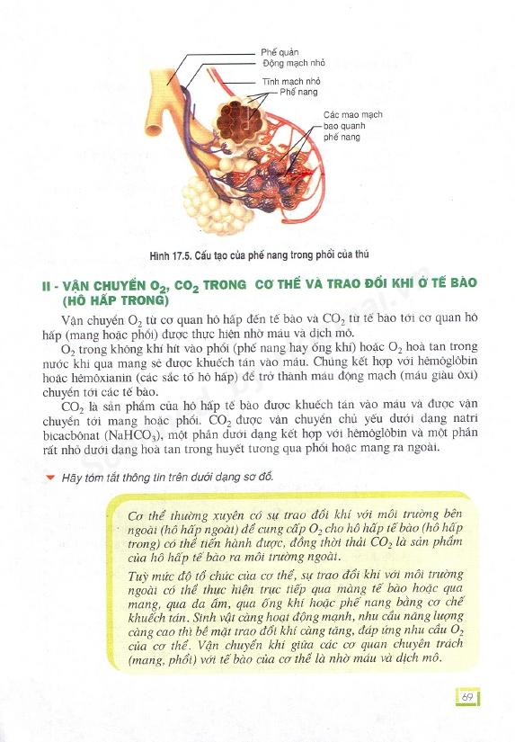 Trang 69