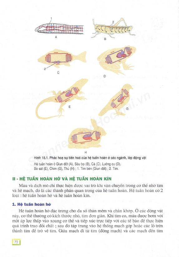 Trang 72
