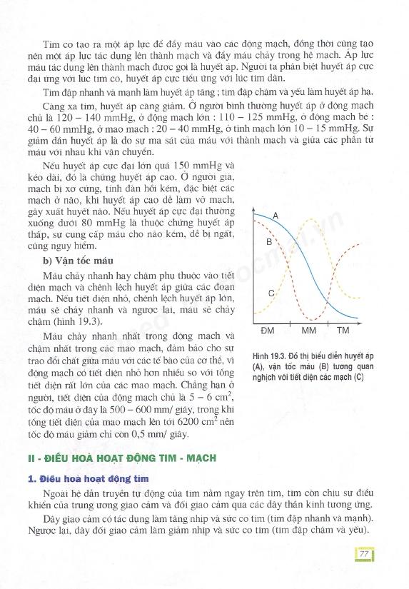 Trang 77