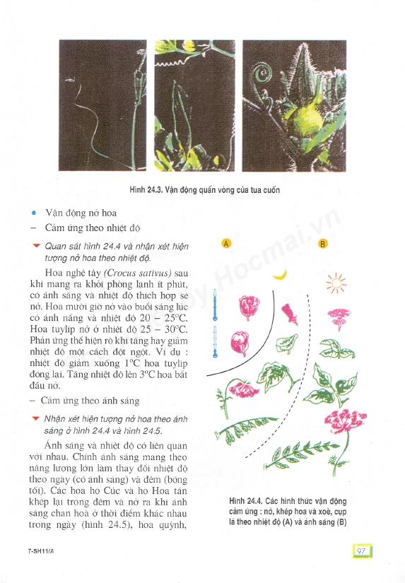 Trang 97