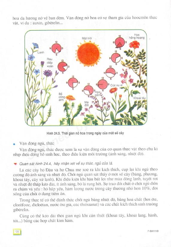 Trang 98