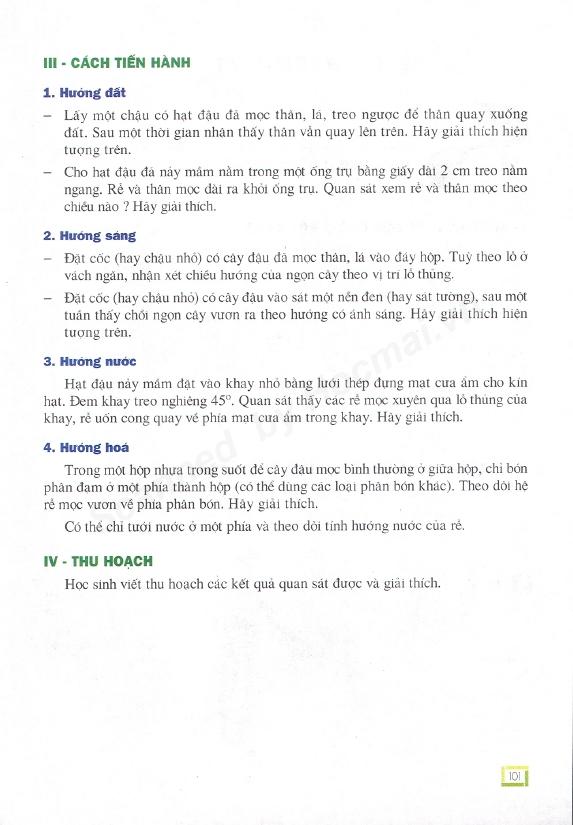 Trang 101