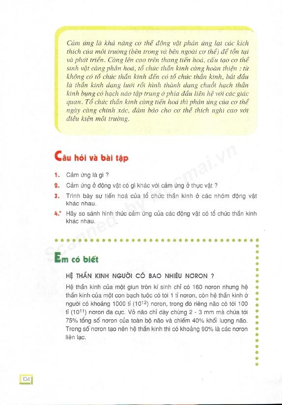 Trang 104