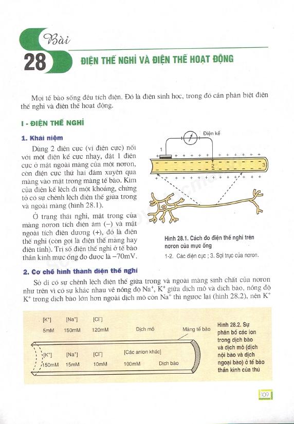 Trang 109