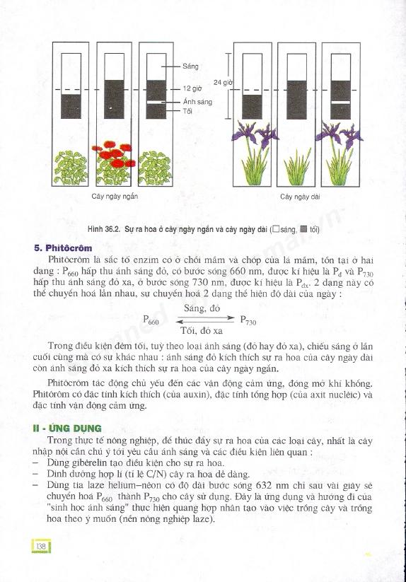 Trang 138