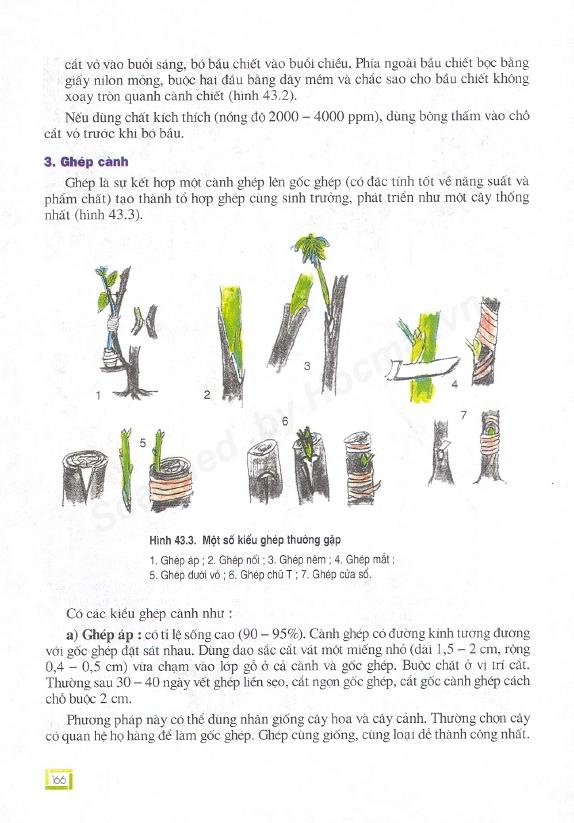 Trang 166
