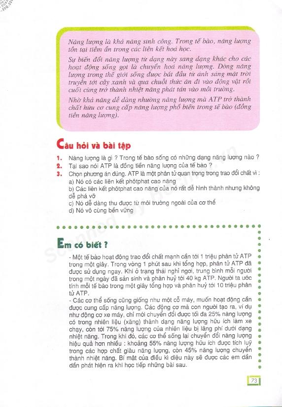 Trang 73