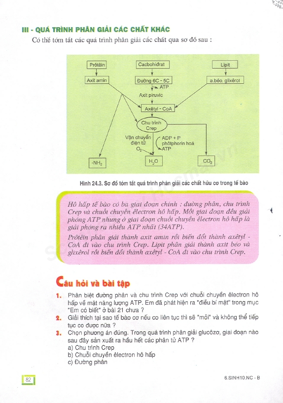 Trang 82