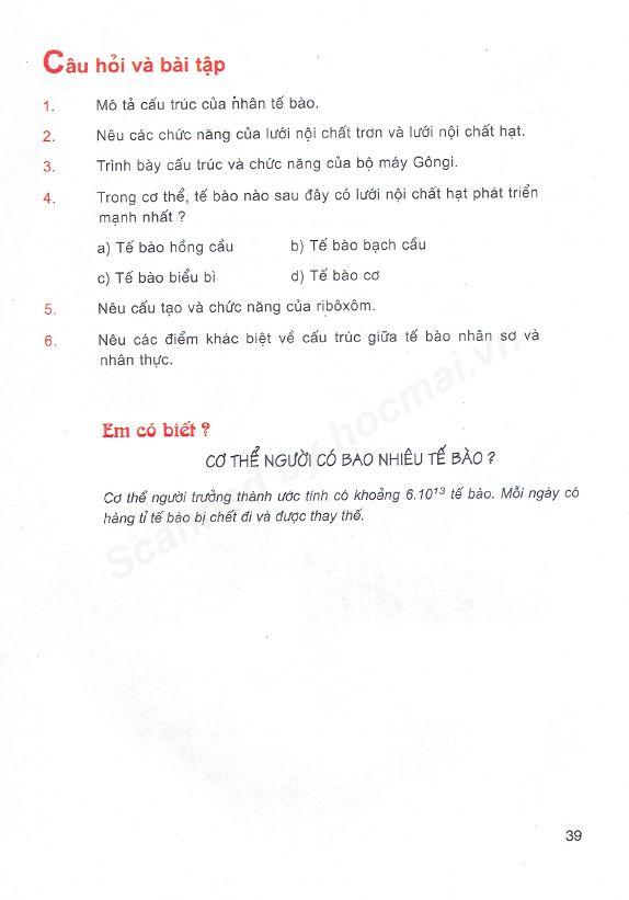 Trang 39