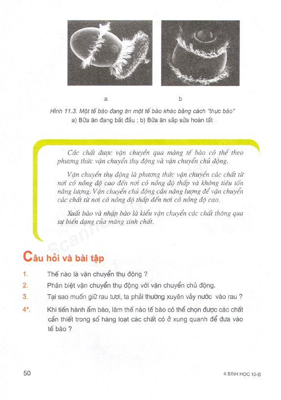 Trang 50