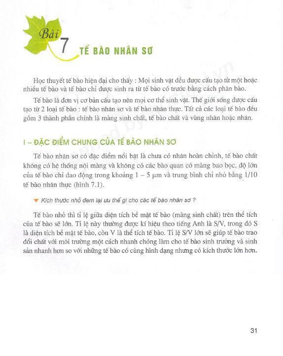 Trang 31-2
