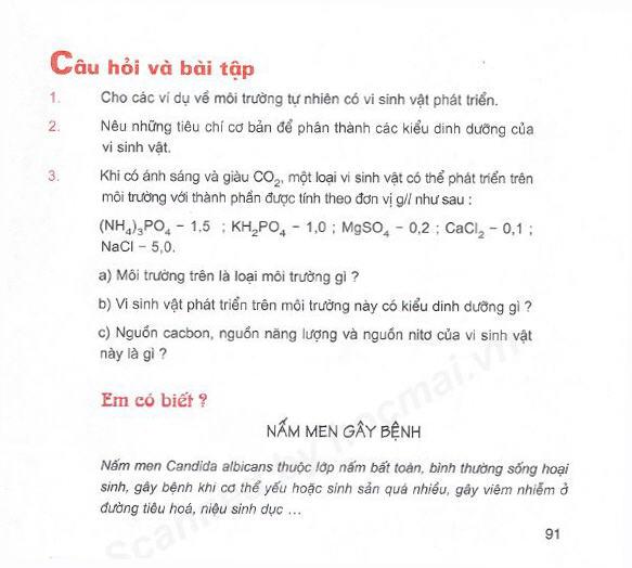 Trang 91