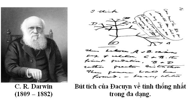 Luyện thi đại học KIT-1: Môn Sinh học (Thầy Bùi Phúc Trạch) :  Bài 2. Học thuyết tiến hóa cổ điển